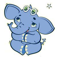 שוקו הפיל