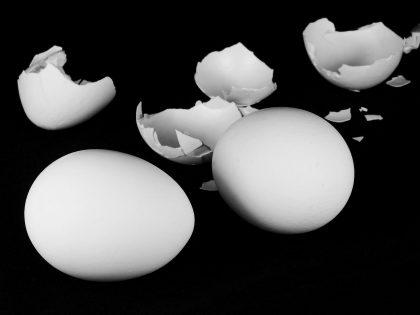 נמאס כברללכת על ביצים